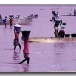 Le lac rose du Sénégal